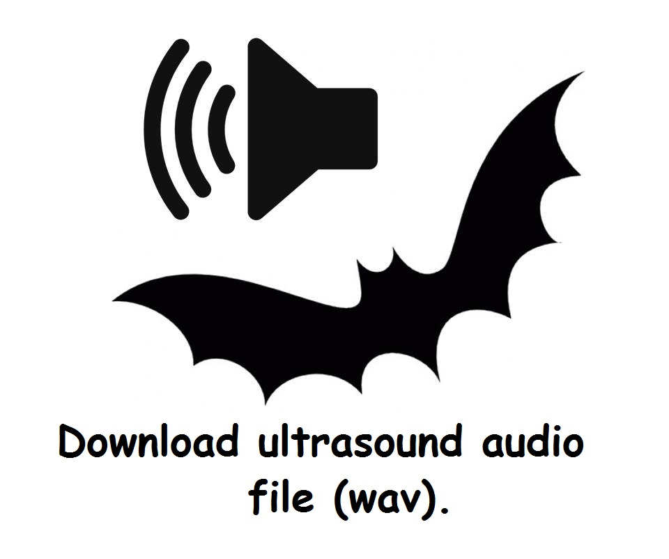 download ultrasound wav file