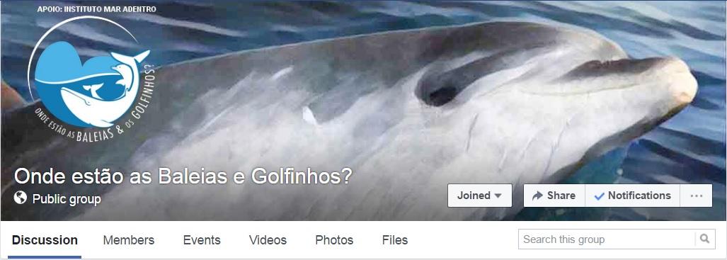 Onde Baleais e golphinos