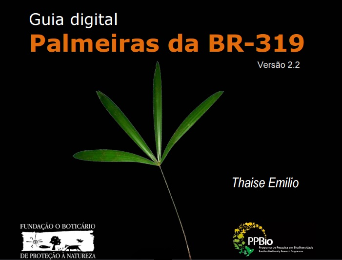 Guide to the Palms of BR319