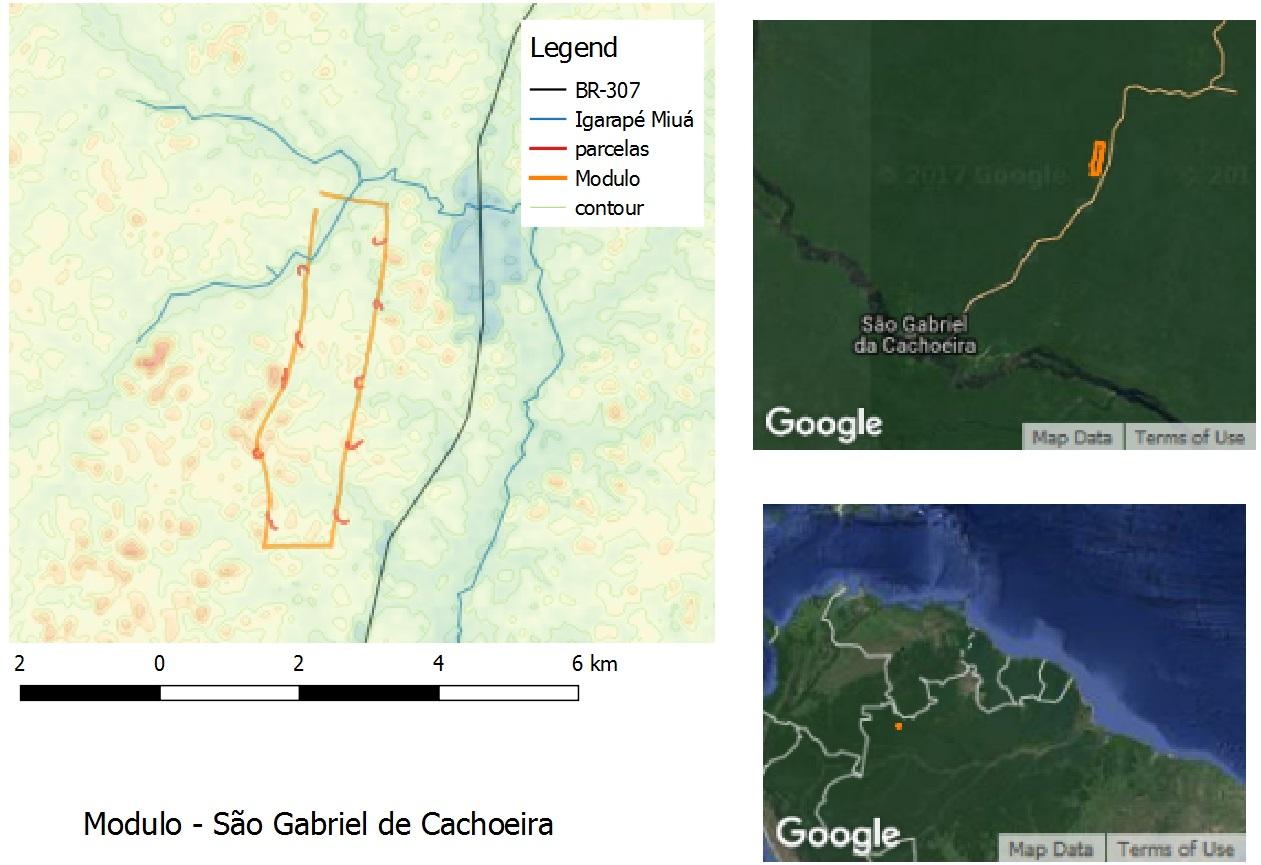 Sao Gabriel e Cachoeira Module